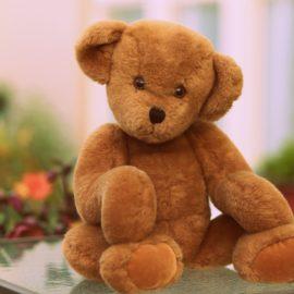 TEDDY BEAR DAY/Dzień Pluszowego Misia